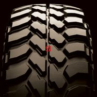 DUNLOP GRANDTREK MT1 tire sheehan